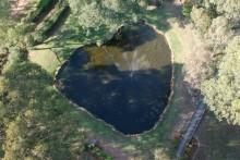 WIld Edge Pond